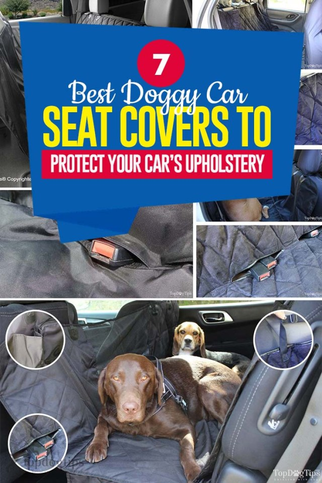 Top 7 Best Car Seat Covers for Dogs to Protect Your Car's Upholstery
