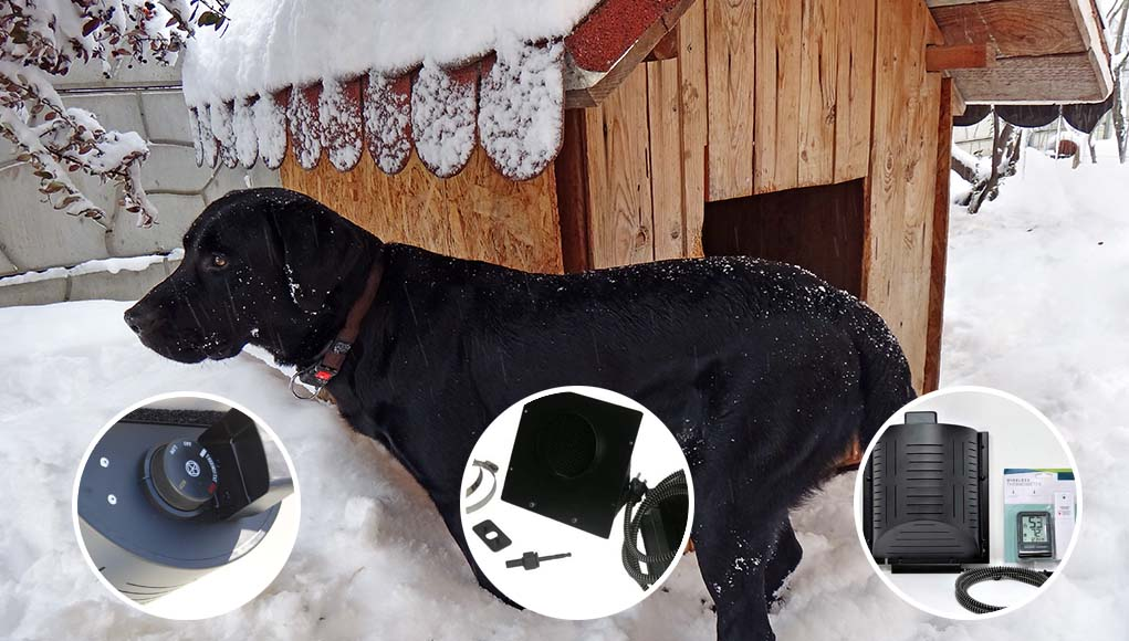 Best Dog House Heaters and Furnaces