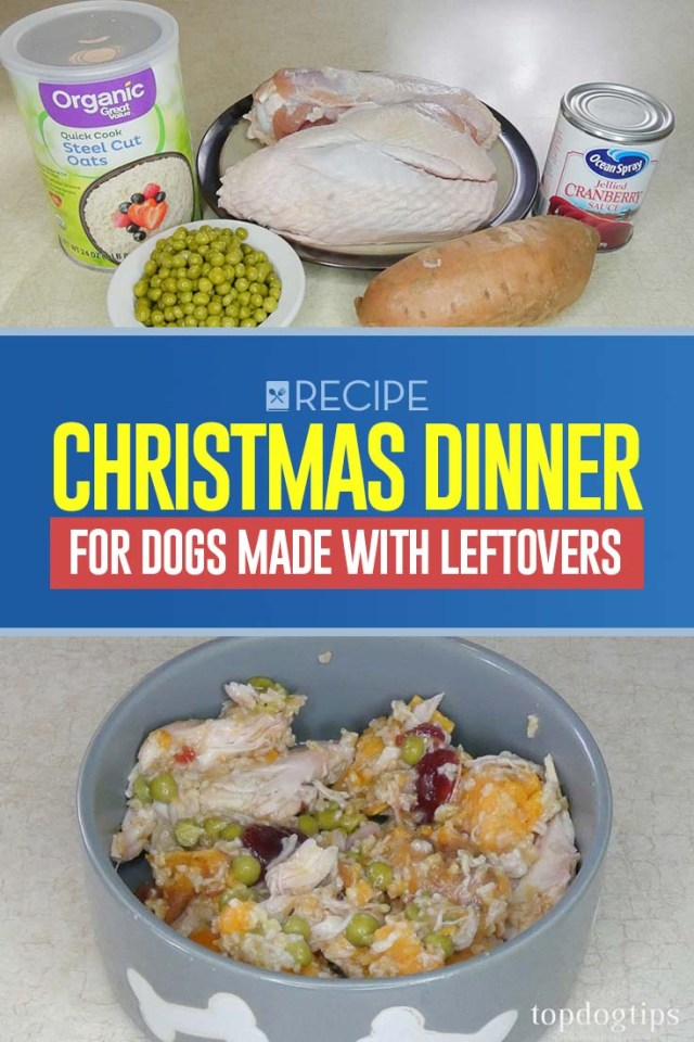 Recipe of Christmas Dinner for Dogs Made with Leftovers