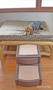 Step Size and Depth of Dog Stairs for Bed