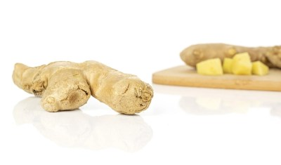 Ginger Root as Natural Dog Pain Relief Home Remedy
