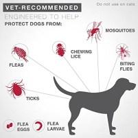 Bayer K9 Advantix II Flea & Tick Control Treatment by Bayer Animal Health
