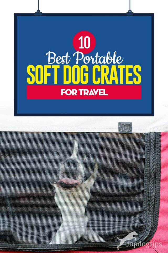 Top 10 Best Portable Soft Dog Crates for Travel