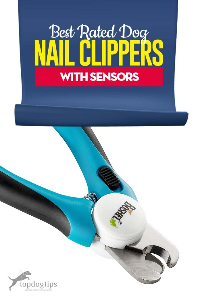 Top Best Dog Nail Clippers with Sensor