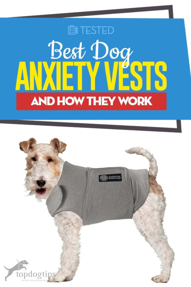 Top Rated Best Dog Anxiety Vests