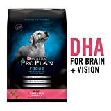 Purina Pro Plan Focus Puppy Lamb and Rice