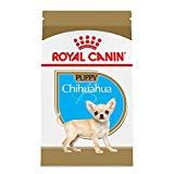 Royal Canin Breed Health Nutrition Chihuahua Puppy Formula