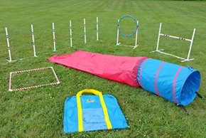 Affordable Agility in the Bag from Agility Inc.