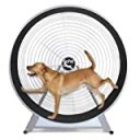GO Pet Treadwheel