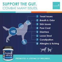 Nusentia Probiotic Miracle, Probiotics for Dogs by NUSENTIA