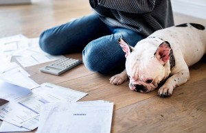 Coronavirus and Finances - 7 Ways Pet Owners Can Save Money and Budget Better