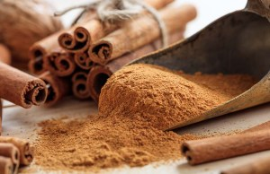 Cinnamon for Dogs - Uses, Benefits and Side Effects
