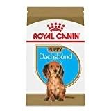 Royal Canin Dachshund Breed Health Nutrition Puppy Formula