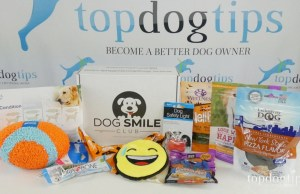 Dog Smile Club Review