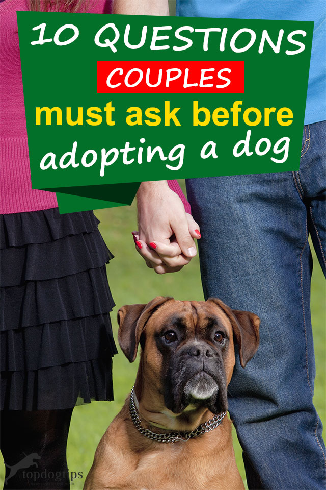 Questions Couples Should Ask Before Adopting A Dog