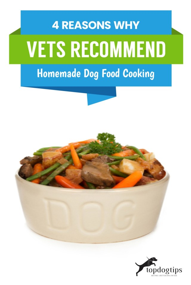 Reasons Why Vets Recommend Homemade Dog Food Cooking