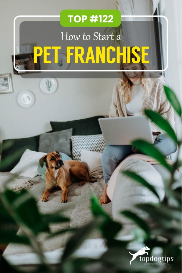 How to Start a Pet Franchise