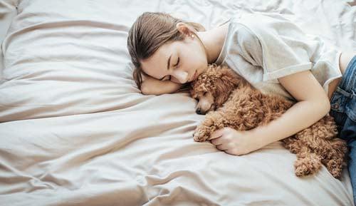 Owner holding dog while sleeping