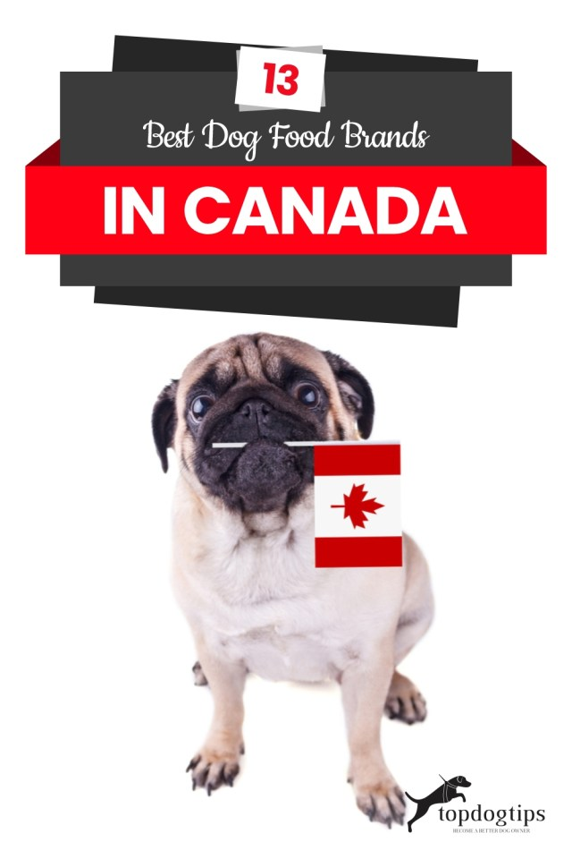 13 Best Dog Food Brands in Canada