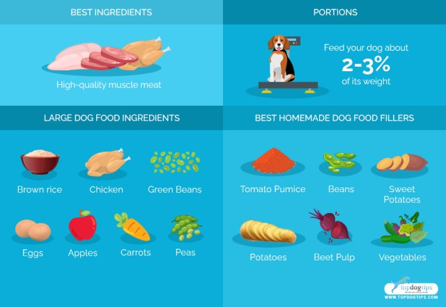 Homemade Dog Food for Large Dogs