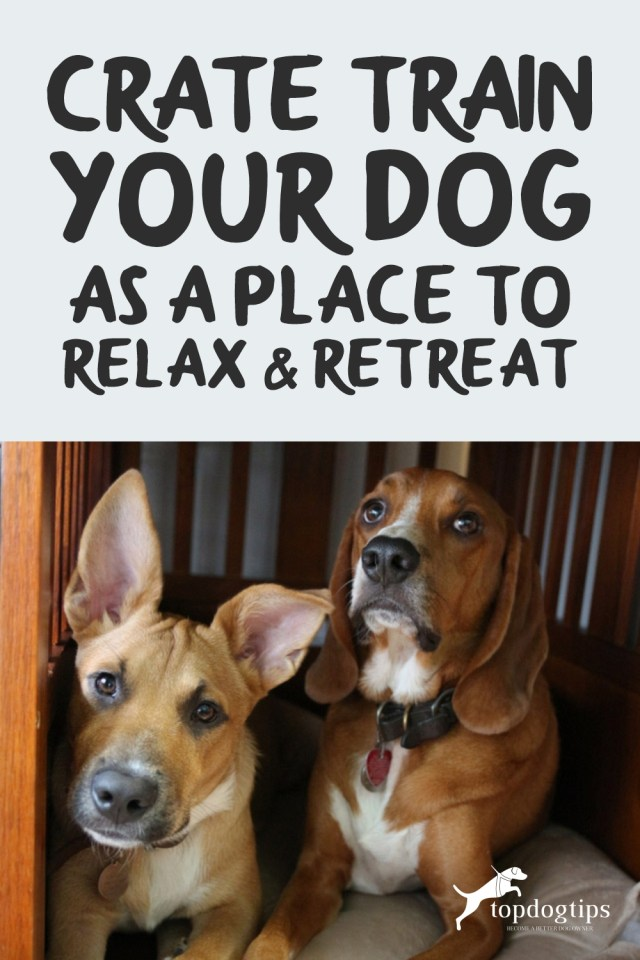 Crate Train Your Dog as a Place to Relax - Retreat