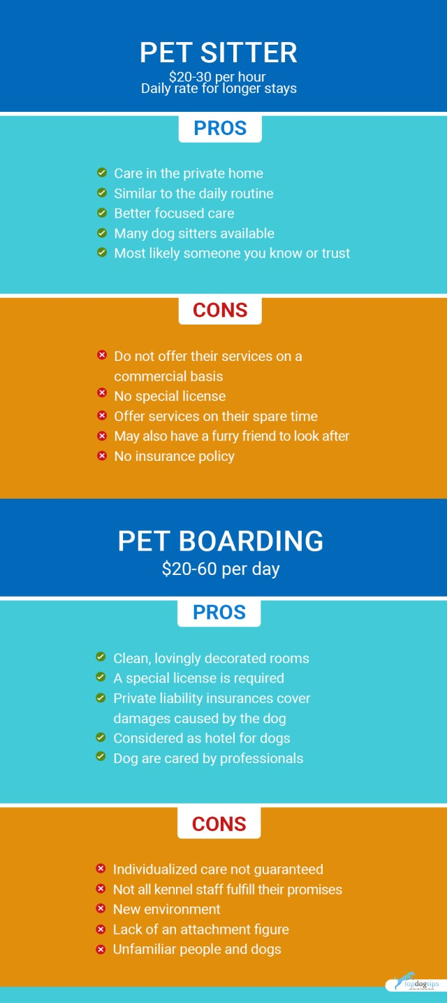 Pet Sitter or Boarding (Choose What's Best For You 3