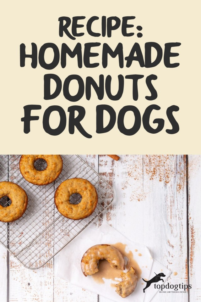 Recipe- Homemade Donuts for Dogs