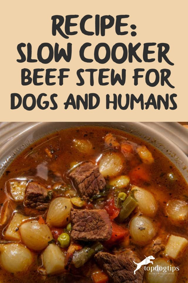 Recipe- Slow Cooker Beef Stew for Dogs and Humans