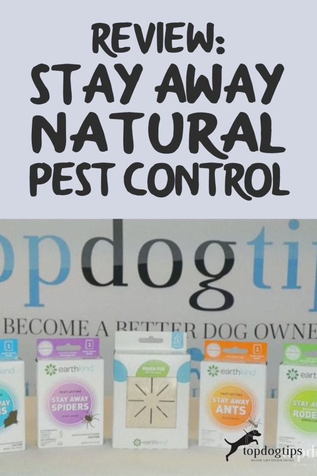 Stay Away Natural Pest Control