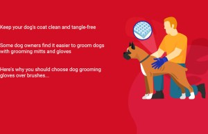 The Best Dog Grooming Mitts and Gloves