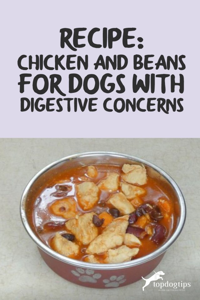 Chicken and Beans for Dogs