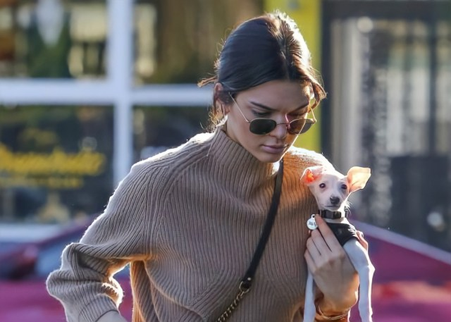 Kendall Jenner and Her Italian Greyhound, Mew