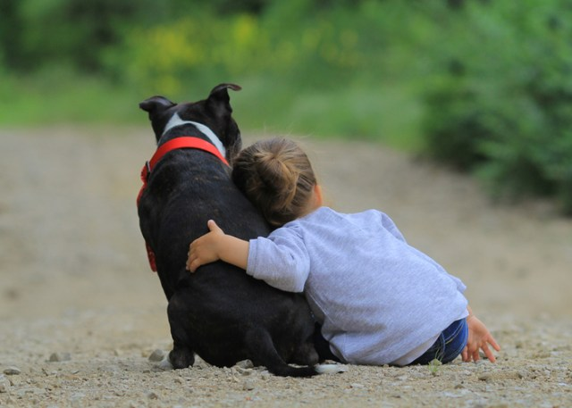Health benefit of owning a dog for kids