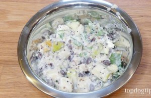 vegetarian homemade dog food