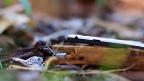 Puerto USB tipo C del Nexus 5X