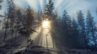 Fondos de pantalla inspirados en la naturaleza atardecer
