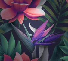 Huawei-Mate-10-wallpaper-9