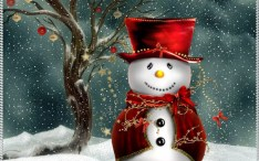 adorno navidad