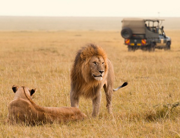 best vacations for kids in africa