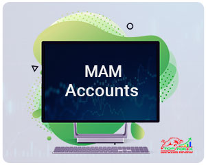 MAM, PAMM & LAMM Accounts: What are they and how can you use them?