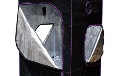 Apollo Horticulture | Mylar Hydroponic Grow Tent – Reviewed!