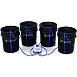 best hydroponic system (DWC)