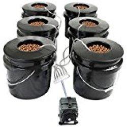 HTG - DWC best indoor grow system