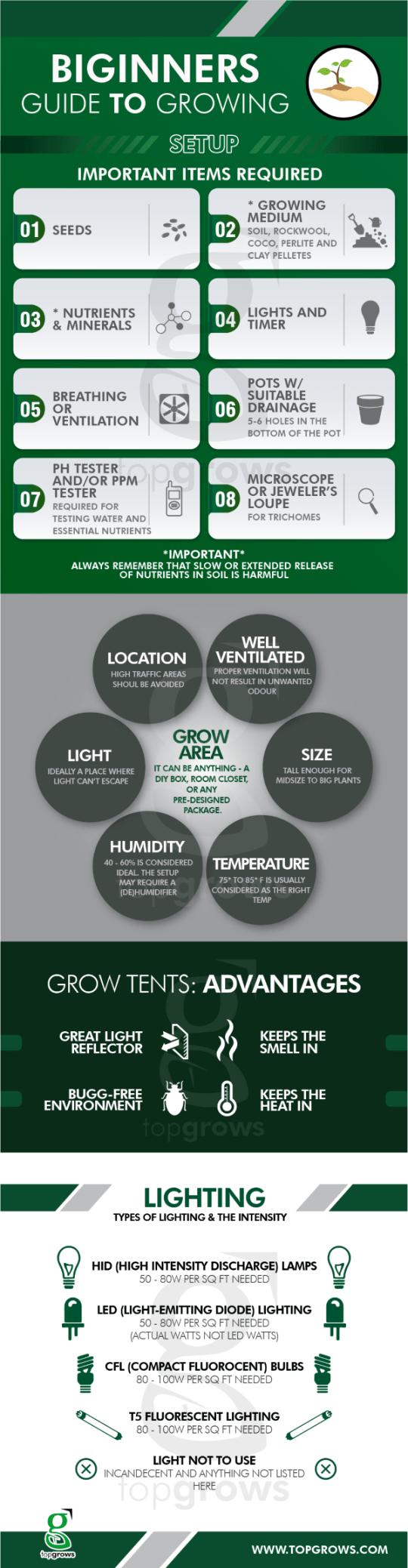 Indoor Growing Set-up Infographic