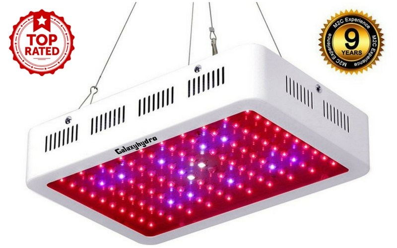 best cheap led grow light