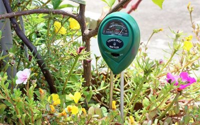 Best PH Soil Tester for your Garden – Top 5 in 2018