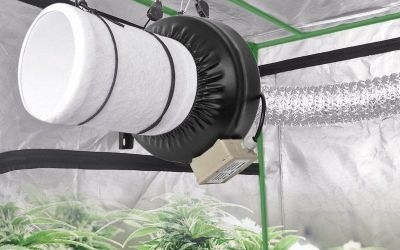 Best Tent Fan for Hydroponics – Top 7 Fans for Grow Room in 2018