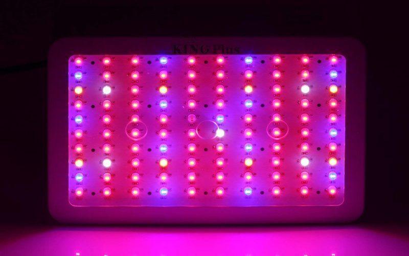 King Plus 1000w LED Grow Light 9