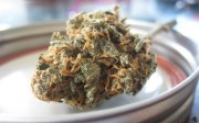 Why you should learn to Dry Marijuana