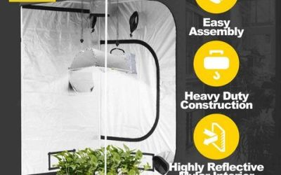 iPower Grow Tent Review [Mylar Hydroponic Top Choices]